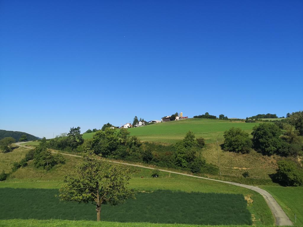 Jurapark Aargau, die grüne Schatzkammer